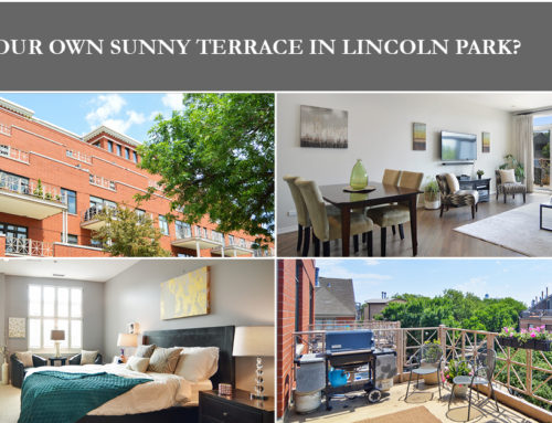 Sunny, Bright, and Beautiful: Lincoln Park Condo for Sale with Huge Terrace in Boutique Building