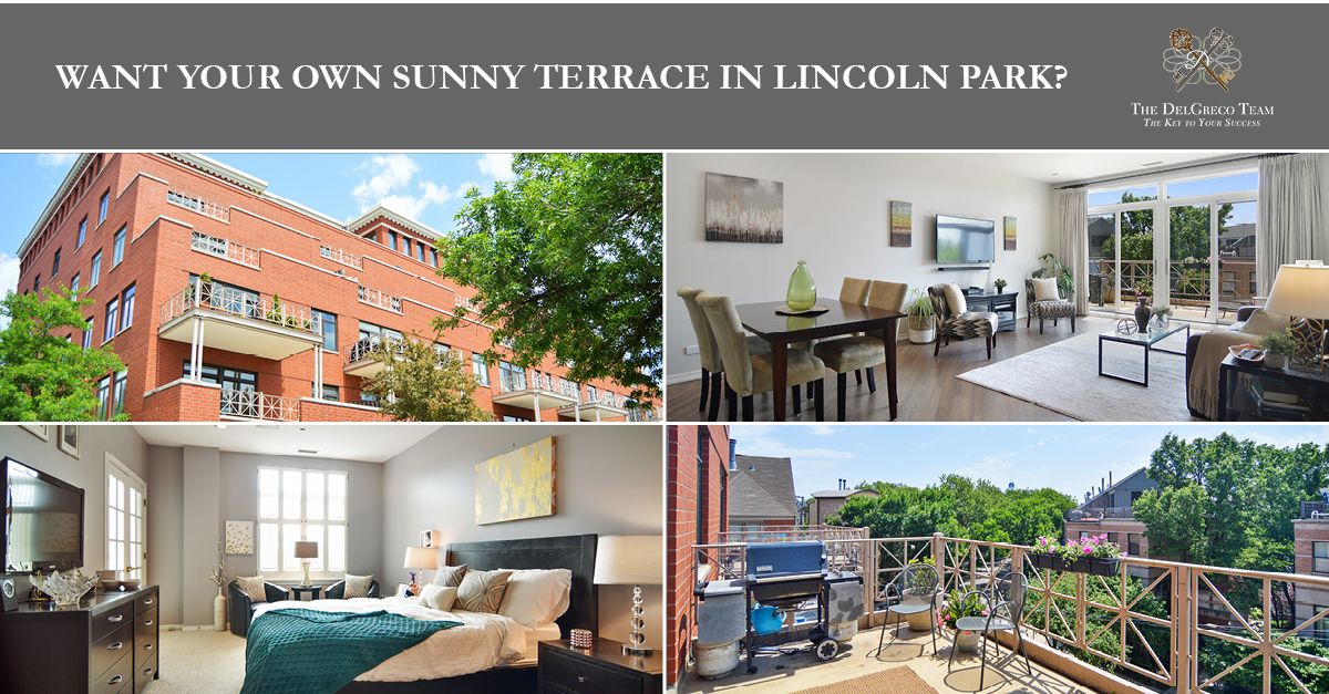 Lincoln Park - 1155 West Armitage Avenue Unit 309, Chicago, IL 60614