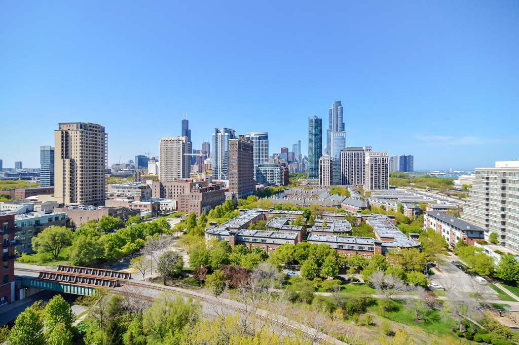 Chicago's South Loop - The DelGreco Real Estate Team